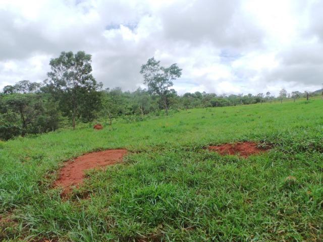 Fazenda 15 Alqueires Municipio Cocalzinho Aceita Imovel até 200 mil - Foto 4