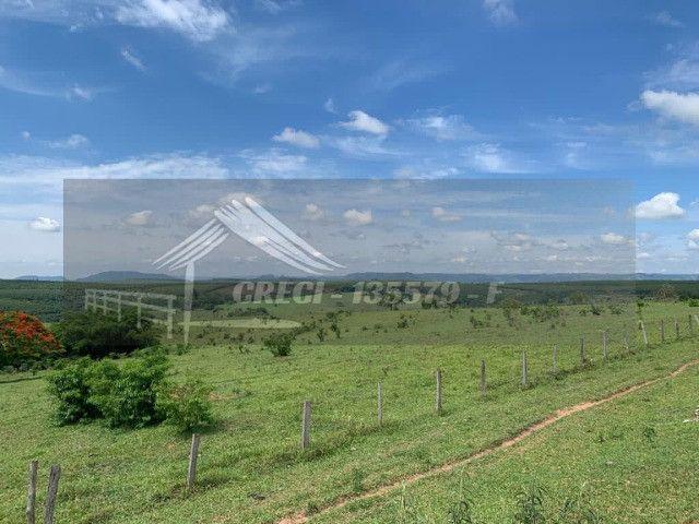 Fazenda com 234 hectares (Nogueira Imóveis Rurais) - Foto 12