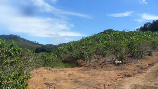 Estou vendendo ótimo terreno muito bom tem água lugar bom sinal telefon - Foto 12