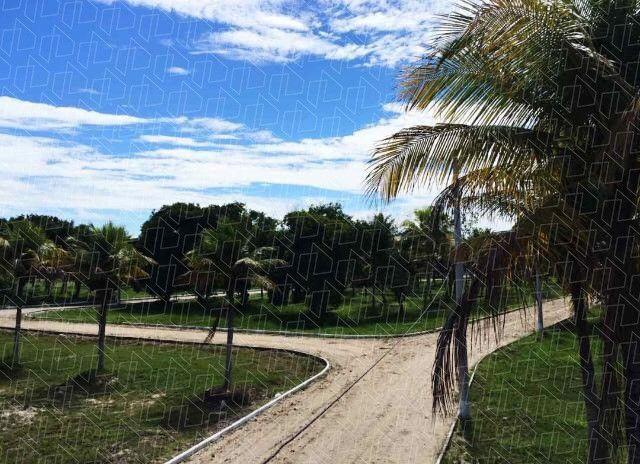 Terrenos em bairro planejado com ótima qualidade de vida, Unamar-03 - Foto 3