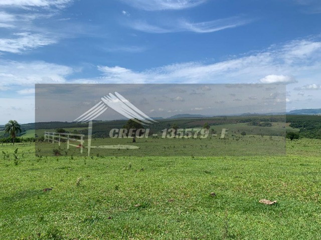 Fazenda com 234 hectares (Nogueira Imóveis Rurais) - Foto 4
