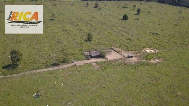 Fazenda à venda com 1.306 hectares, no distrito de Triunfo/RO - Foto 6