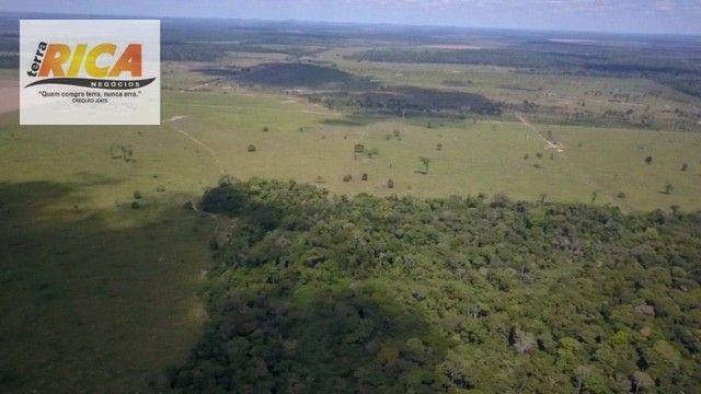 Fazenda à venda com 1.306 hectares, no distrito de Triunfo/RO - Foto 9