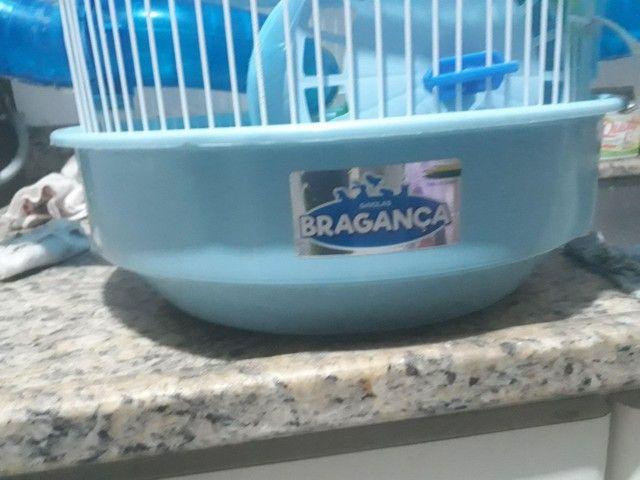 Ramise macho com gaiola Bragança.  - Foto 3