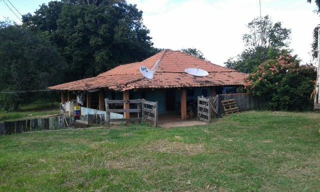 Fazenda 644 Alqueires Ribeiraozinho ,fazenda pronta para uso