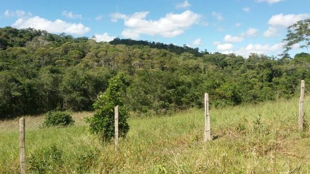 Cidade ilhéus região Japu, Sitio 72 hectares - Foto 10
