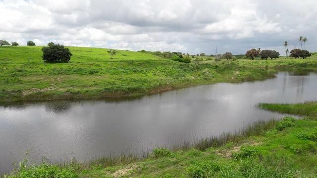 Fazenda com 170 hectares na região de monte alegre - Foto 18