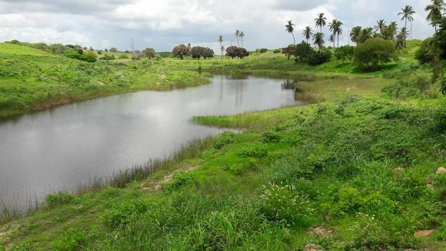 Fazenda com 170 hectares na região de monte alegre - Foto 19