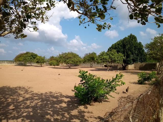 Excelente Sítio na Zona Rural de São José de Mipibu - Foto 2