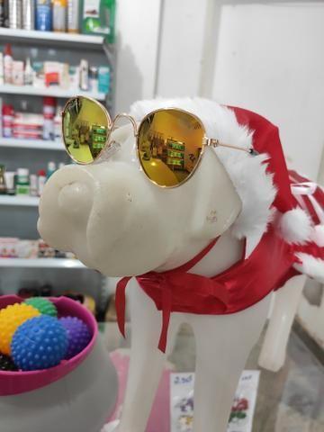 Óculos Pet - Foto 3