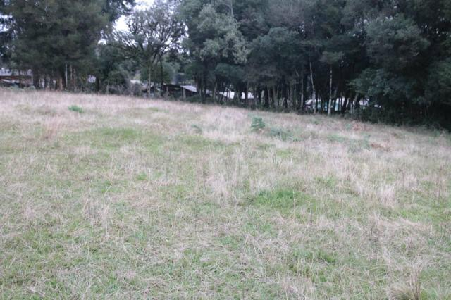 Terrenos em fazenda souza