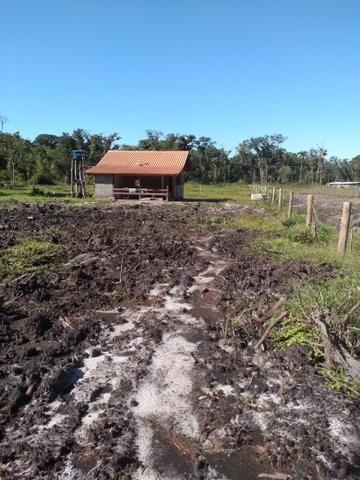 Sítio em Araquari aceito troca - Foto 4