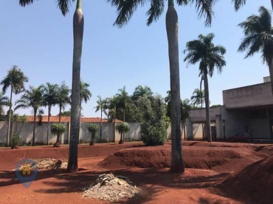 Alugue Casa de 5000 m² (Recanto dos Pinheiros, Cambé-PR) - Foto 16