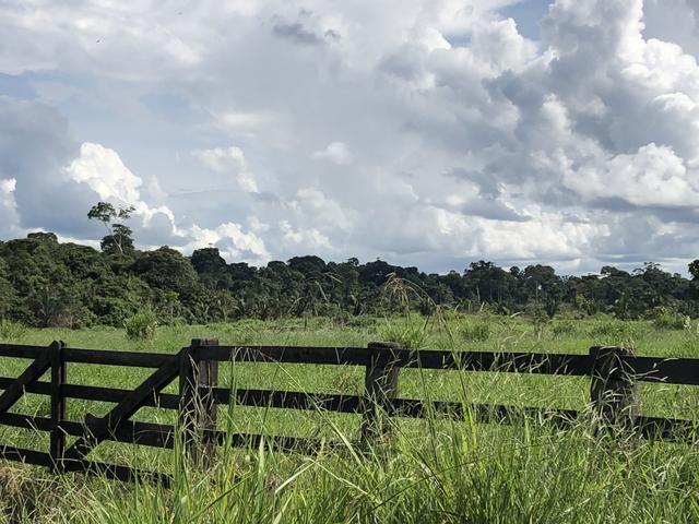 Fazenda Medindo 257,00 ha (Documentada, Apta a fazer financiamentos) - Foto 3