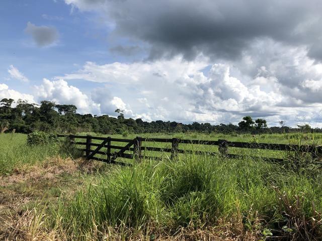 Fazenda Medindo 257,00 ha (Documentada, Apta a fazer financiamentos) - Foto 2