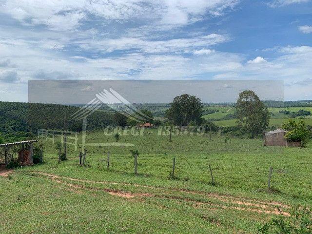 Fazenda com 234 hectares (Nogueira Imóveis Rurais) - Foto 13