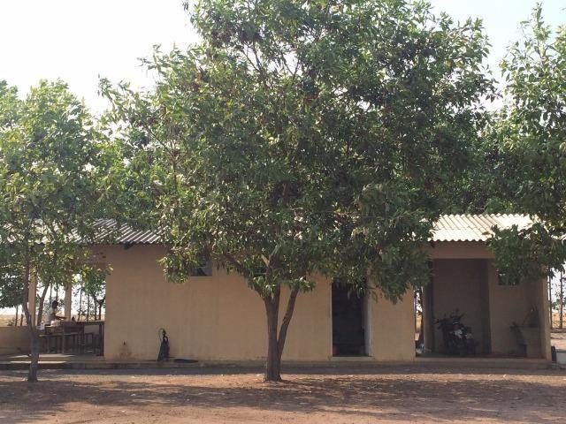 Fazenda em Uruçui Piauí - Foto 14