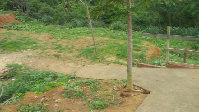Terreno e lotes - Foto 3