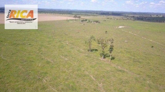 Fazenda à venda com 1.306 hectares, no distrito de Triunfo/RO - Foto 4