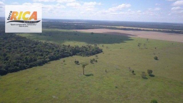 Fazenda à venda com 1.306 hectares, no distrito de Triunfo/RO - Foto 5