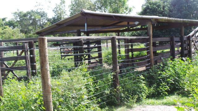 Fazenda 14 Alqueires as Margens Br 414 Nao aceita Trama