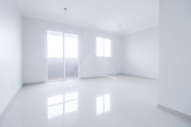 Kitchenette/conjugado para alugar com 0 dormitórios em Centro, Passo fundo cod:13781 - Foto 2
