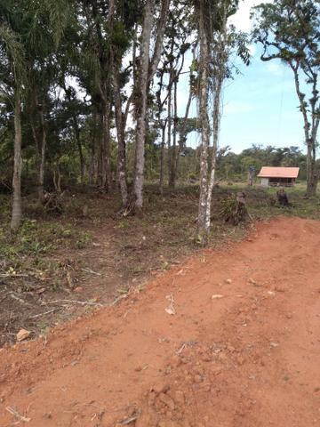 Sítio em Araquari aceito troca - Foto 3