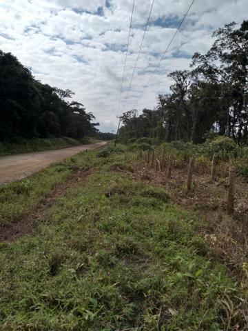 Sítio em Araquari aceito troca - Foto 7