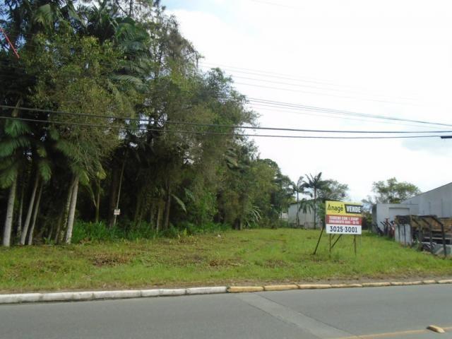 Terreno para alugar em Pirabeiraba, Joinville cod:00444.007 - Foto 14