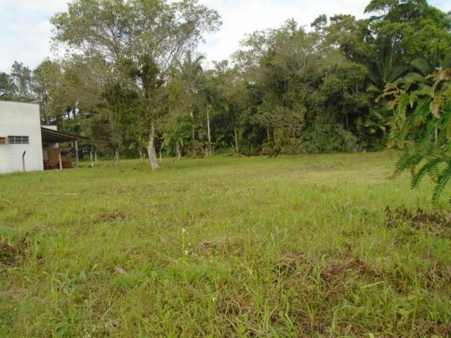 Terreno para alugar em Pirabeiraba, Joinville cod:00444.010 - Foto 8