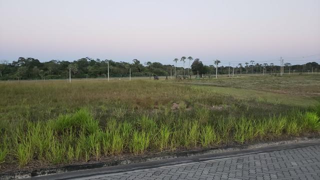 Alphaville terra 2 - 390m2 - LOTE DE ESQUINA - PROPRIETÁRIO - Foto 9
