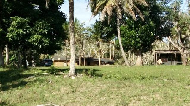 Imóvel rural no interior da Bahia.  - Foto 15