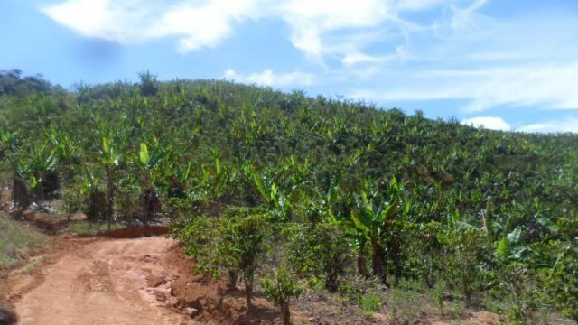 Estou vendendo ótimo terreno muito bom tem água lugar bom sinal telefon - Foto 4
