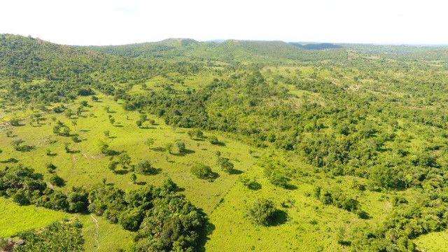Fazenda com 561 há (116 alq) maior valorização pecuarista próximo a capital - Foto 3