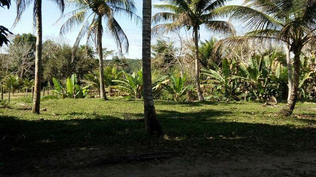 Imóvel rural no interior da Bahia.  - Foto 5