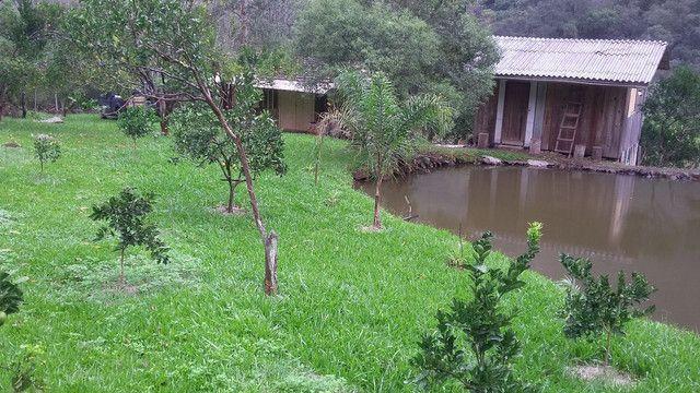 Chácara ótima localização na BR 116com casa  próximo à Caxias do Sul