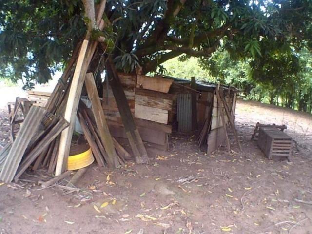 Chácara para alugar em Loteamento edem leste (zona rural), Sao jose do rio preto cod:L632 - Foto 10