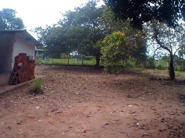 Chácara para alugar em Loteamento edem leste (zona rural), Sao jose do rio preto cod:L632 - Foto 8