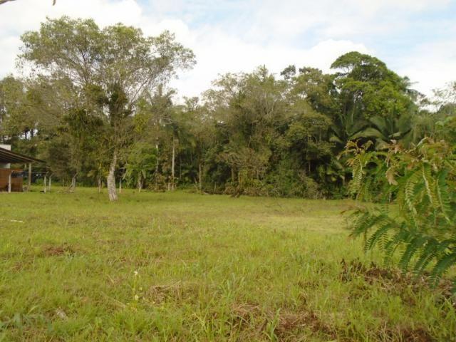 Terreno para alugar em Pirabeiraba, Joinville cod:00444.010 - Foto 7