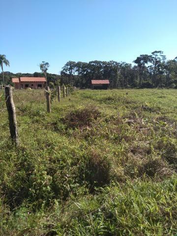 Sítio em Araquari aceito troca - Foto 8
