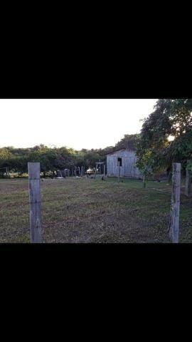 Vendo Fazenda - Foto 5