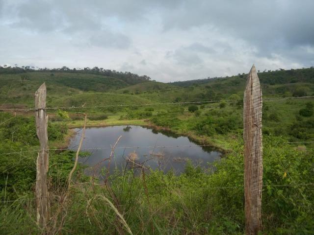 Mundo Novo Fazenda - Foto 14