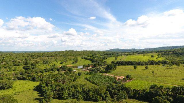 Fazenda com 561 há (116 alq) maior valorização pecuarista próximo a capital - Foto 14