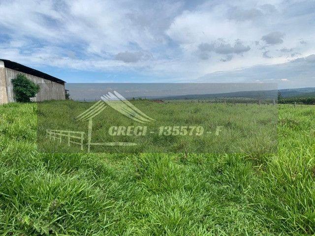 Fazenda com 234 hectares (Nogueira Imóveis Rurais) - Foto 20