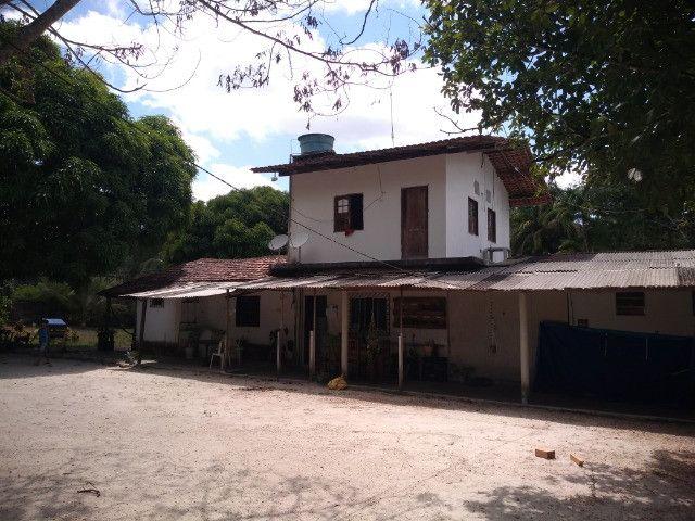 Sitio no cupiuba em Castanhal-Pa 100x450 R$ 120 mil reais troco em casa em Castanhal - Foto 17