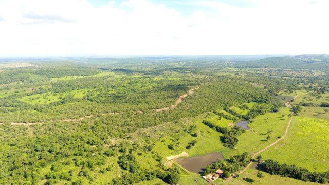 Fazenda com 561 há (116 alq) maior valorização pecuarista próximo a capital - Foto 13