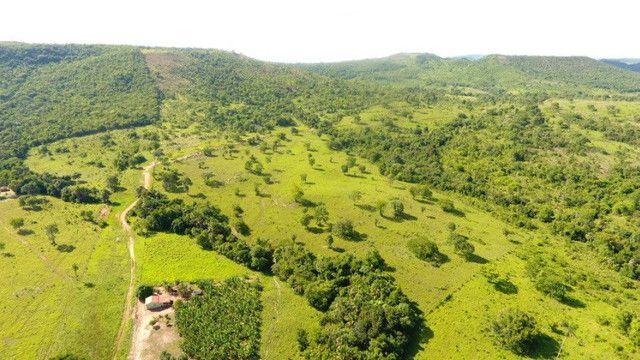 Fazenda com 561 há (116 alq) maior valorização pecuarista próximo a capital - Foto 10
