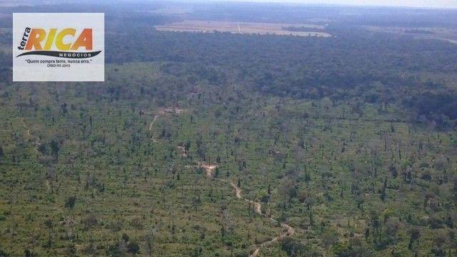 Fazenda à venda com 1.306 hectares, no distrito de Triunfo/RO - Foto 3