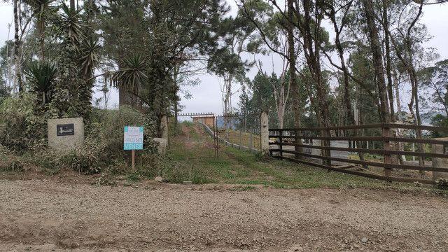 Terreno na represa volta grande serro azul fundos água ideal pra chalé ou pousada  - Foto 5