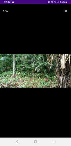 Terreno no rio tumuacar - Foto 2